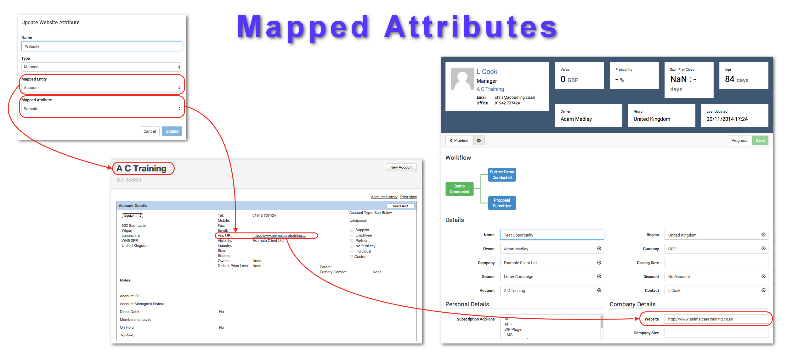 How Mapped Attributes work in the Opportunities System